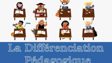 pédagogie différenciée et différenciation pédagogique