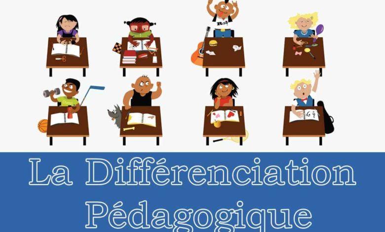 Tout savoir sur la différenciation pédagogique
