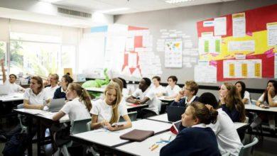 Stratégies de la différenciation pédagogique